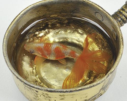 riusuke-fukahori-goldfish-at-joshua-liner-gallery-designboom-500