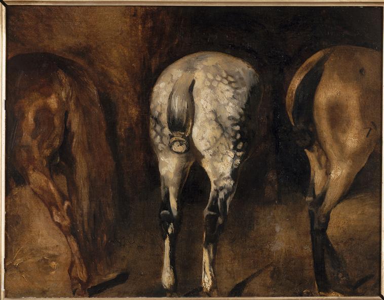 three-rumps-of-horses