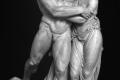 Pietro Finelli vs Giuseppe Pacetti - Alcide e Dejanira – 1801